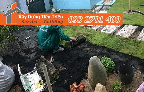 Báo giá trồng cỏ Nhung Nhật bao nhiêu tiền 1 mét vuông