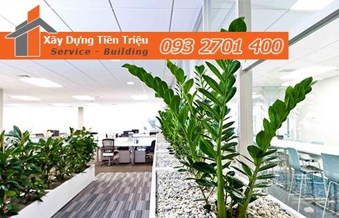 Địa chỉ bán cây cảnh bonsai cây xanh văn phòng Huyện Nhà Bè